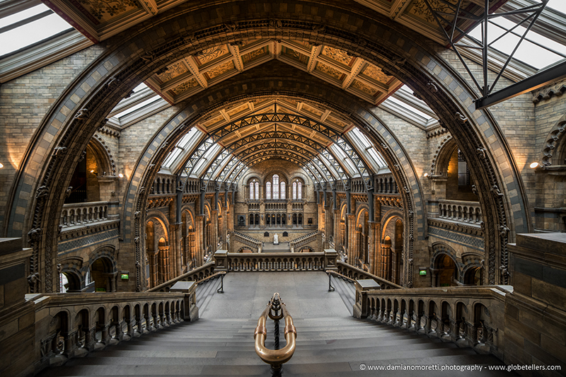 damiano moretti photography - Urban - Natural History Museum - London - UK